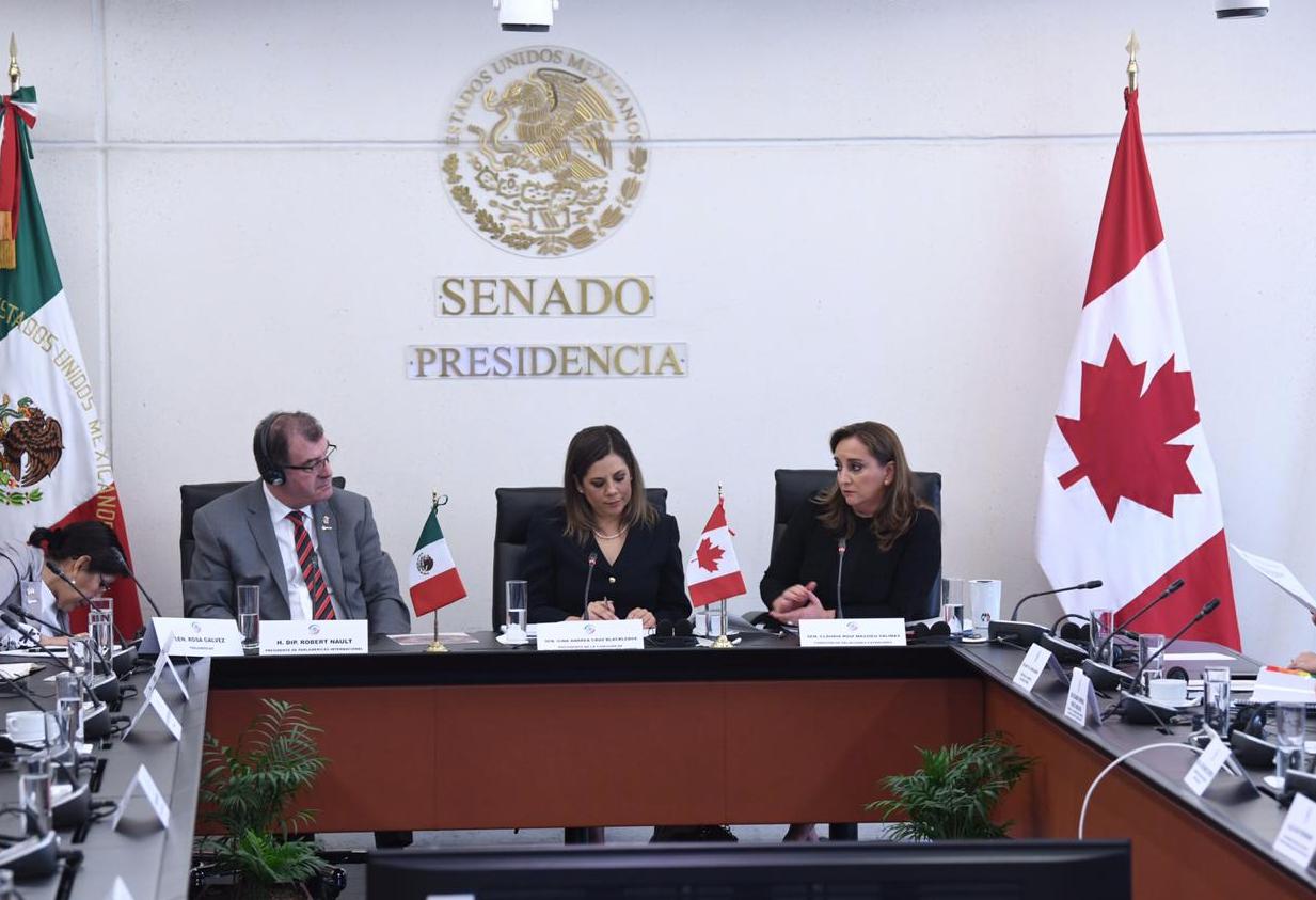 INTERVENCIONES DE CLAUDIA RUIZ MASSIEU EN LA REUNIÓN DE COMISIONES UNIDAS DE RELACIONES EXTERIORES.