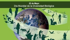 """22 MAYO """"DÍA INTERNACIONAL DE LA DIVERSIDAD BIOLÓGICA"""""""