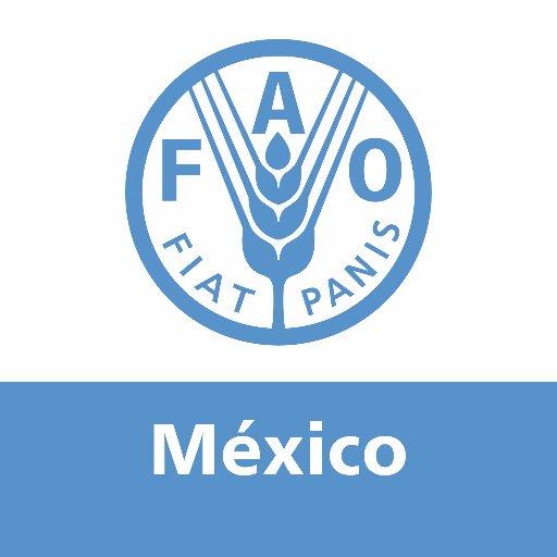 La FAO cumple 40 años en México