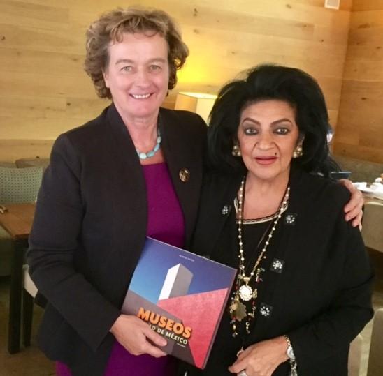 Reunión de la Subsecretaria Elsa Espinosa con la Embajadora de Irlanda, Excma. Sra. Barbara Jones.
