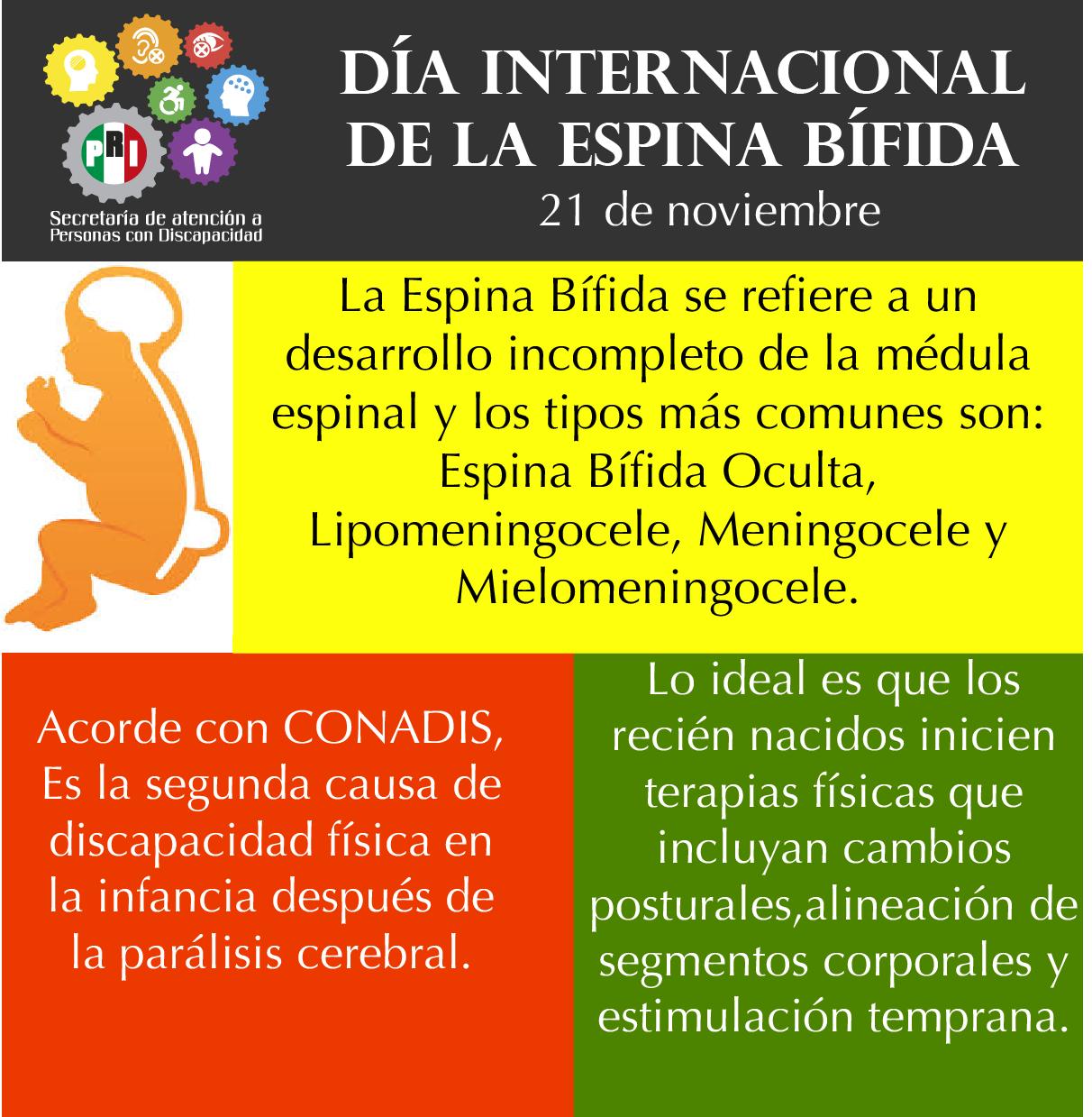 Día Internacional de la Espina Bífida