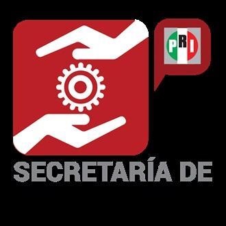 SECRETARÍA DE GESTIÓN SOCIAL COMITÉ EJECUTIVO NACIONAL