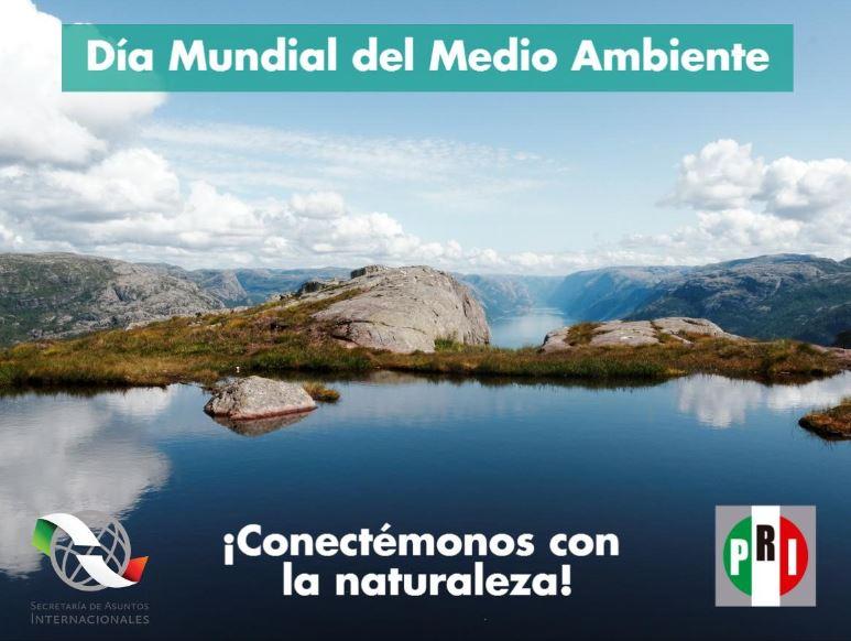 Día de Mundial del Medio Ambiente