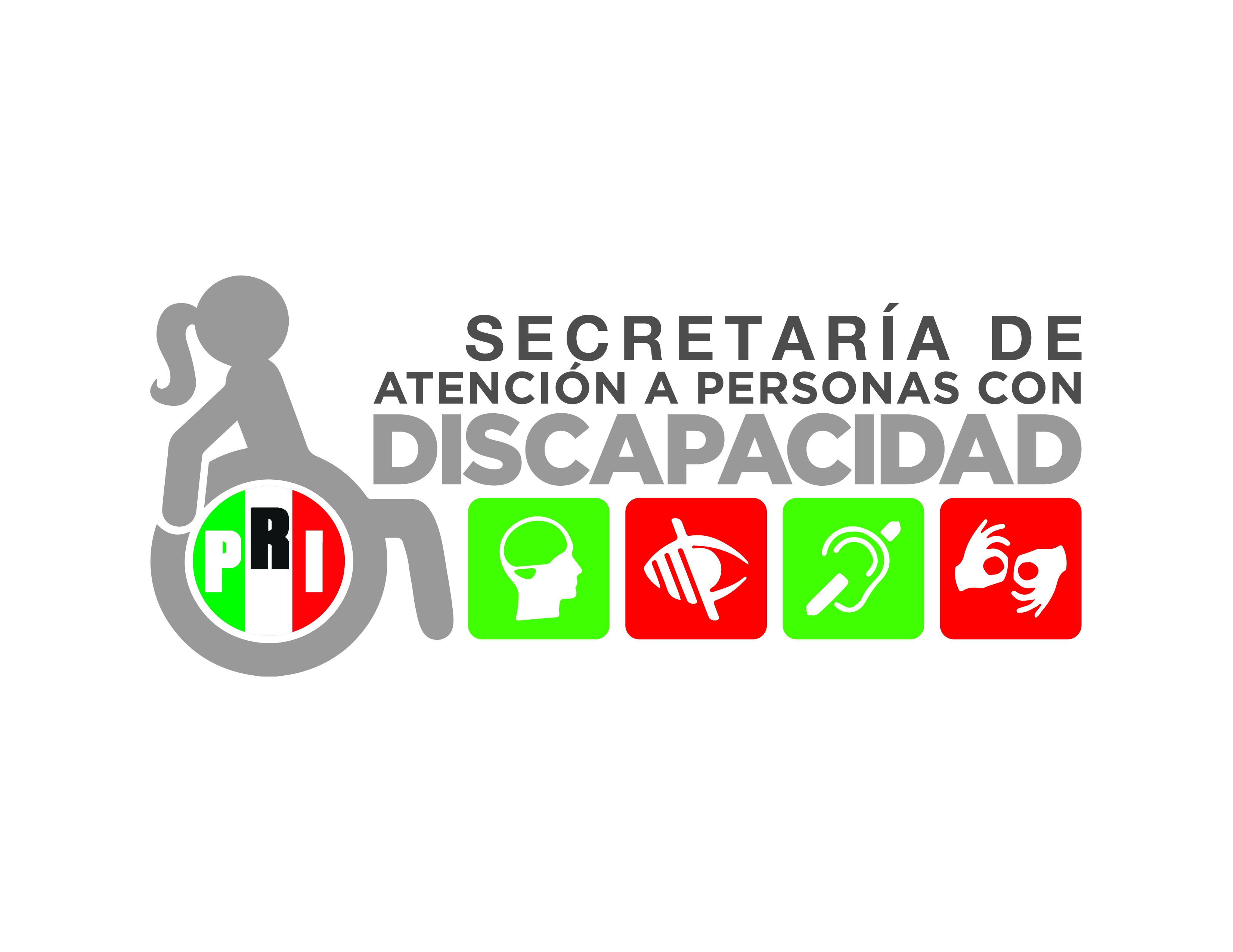 Decreto del Registro Nacional de Población con Discapacidad