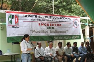ES TIEMPO DE PERFILAR UNA NUEVA POLÍTICA INDIGENISTA: NARCEDALIA RAMÍREZ.
